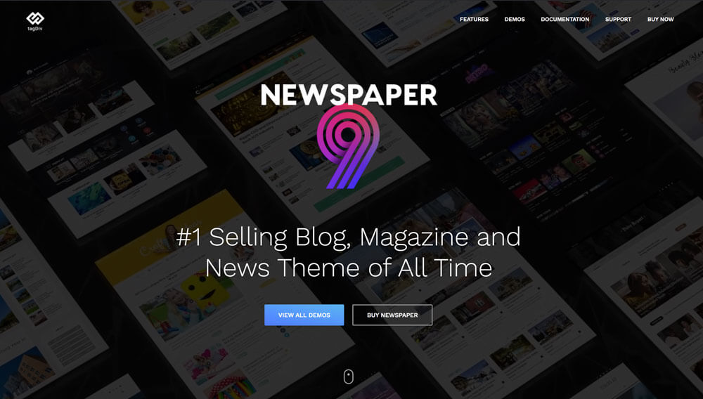 Download Newspaper – WordPress theme for blogging, news, newspaper, magazine Themes and Plugins Review